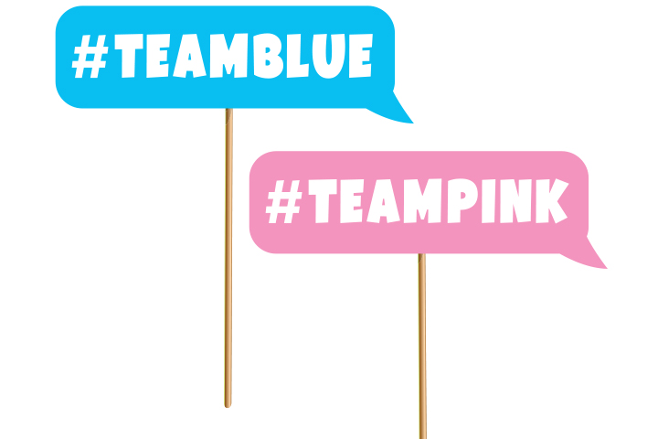 Team Pink vs. Team Blue yard games