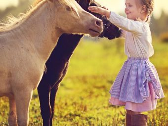 25 Informative And Fun Facts About Horses For Kids