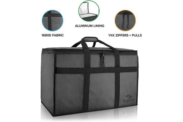 BlueVoy Insulated Food Delivery Bag