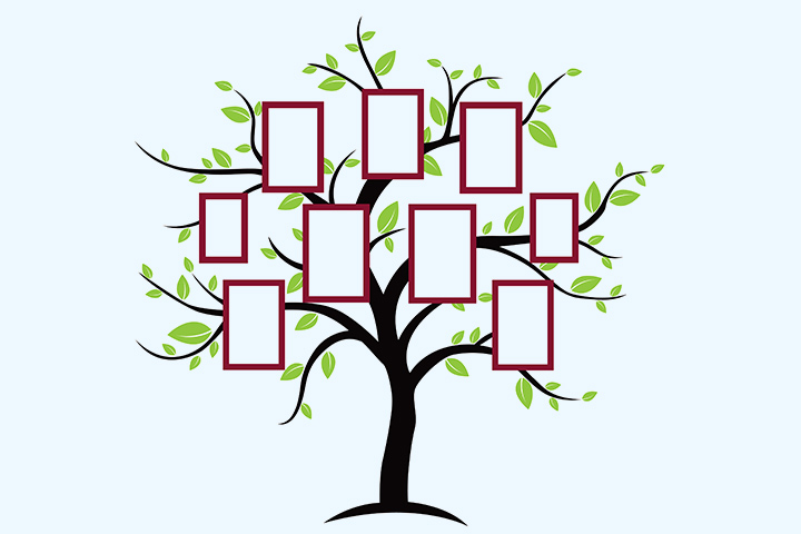 Family tree wall stickerdecal