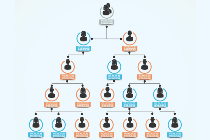 Infographic family tree