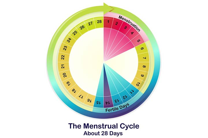Menstrual Period Meaning In Hindi