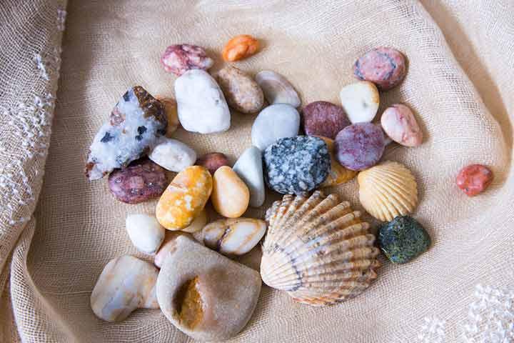 Rocks and seashells