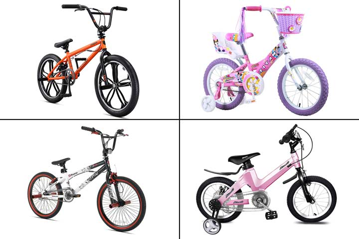 11 Best BMX Bikes To Buy In 2020-1
