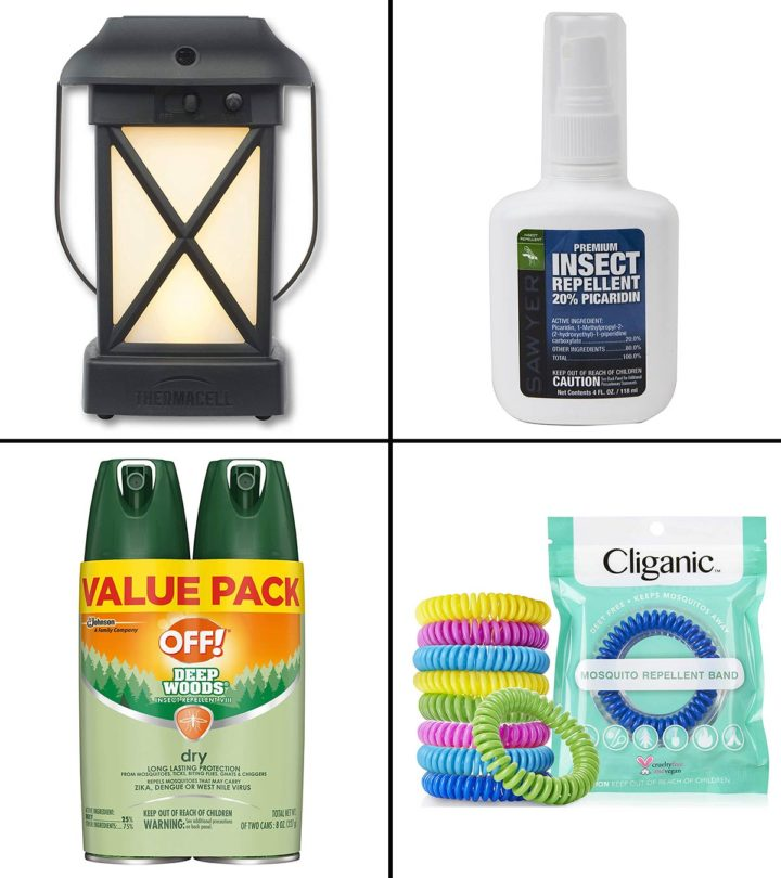 11 Best Bug Repellents for Camping In 2020