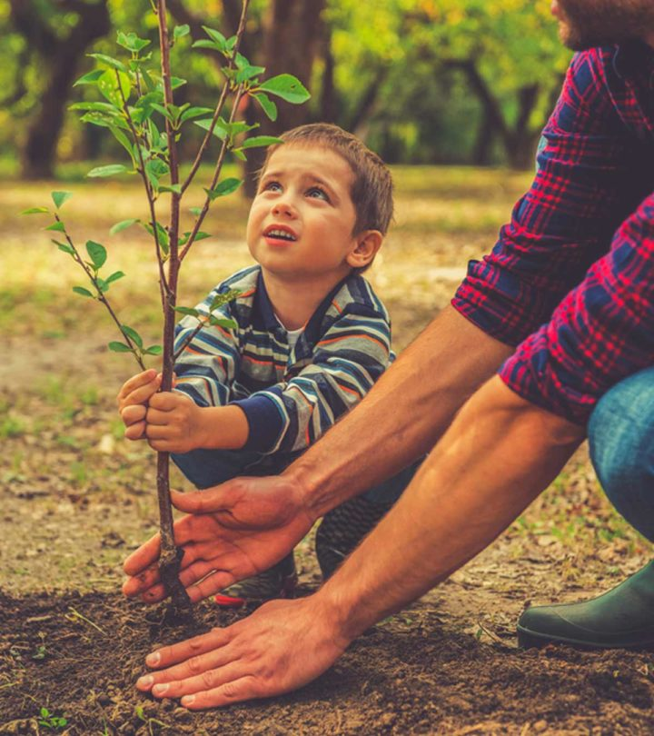 50 Interesting Facts And Information About Plants For Kids_1