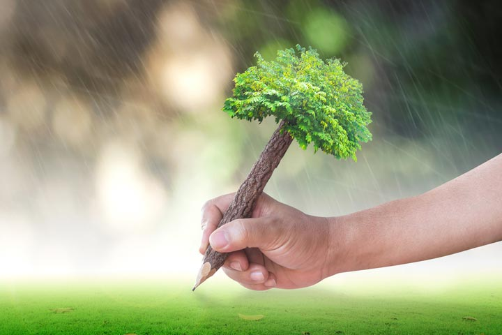 A large tree can consume 100 gallons of water