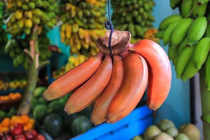 Benefits of Red banana in Tamil1