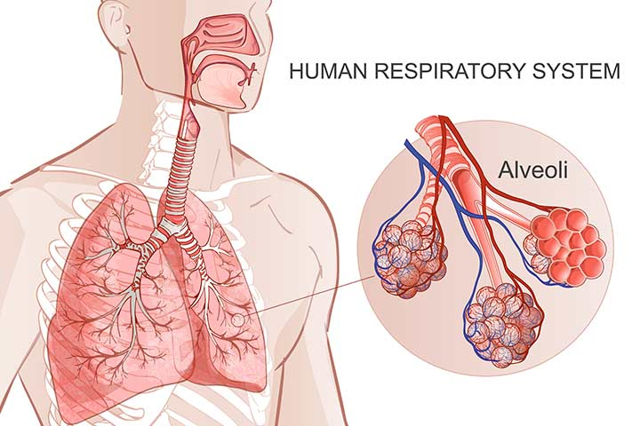 Causes Of Neonatal Respiratory Distress Syndrome