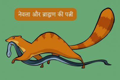 नेवला और ब्राह्मण की पत्नी की कहानी | The Brahmani & The Mongoose Story In Hindi