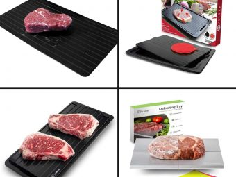 13 Best Defrosting Trays To Buy In 2020