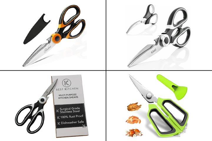 15 Best Poultry Shears To Buy In 2020-1.jpg