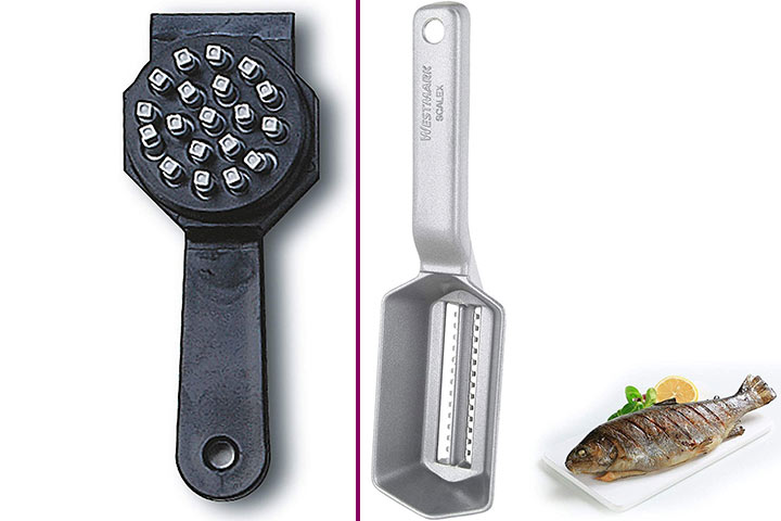 Best Fish Scalers To Buy In 2020