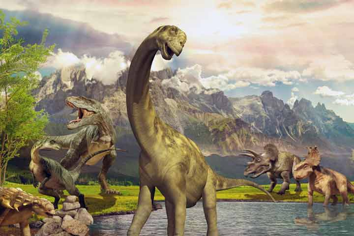 Interesting And Fun Facts About Dinosaurs For Kids