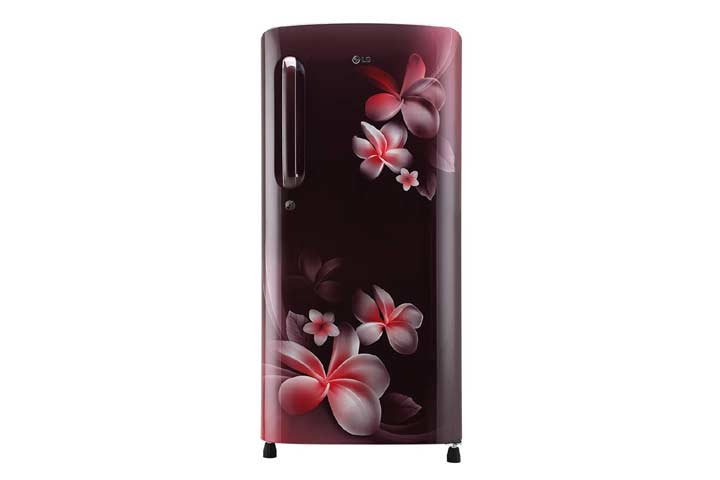 LG 190 L 4 Star Inverter Single Door Refrigerator