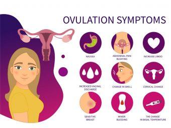 ओवुलेशन (डिंबोत्सर्जन) के 7 प्रमुख लक्षण व गर्भधारण |  Ovulation Signs And Symptoms In Hindi