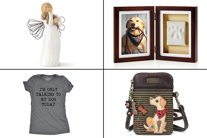13 Best Gifts For Dog Lovers In 2020
