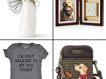 13 Best Gifts For Dog Lovers In 2021