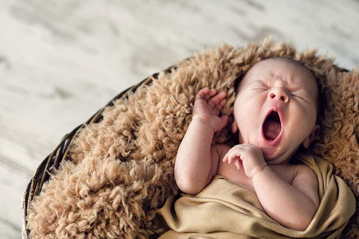 Capture a cute yawn