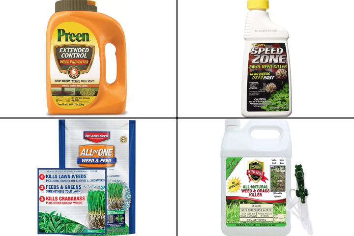Best Weed Killers To Keep Your Lawn Looking Beautiful