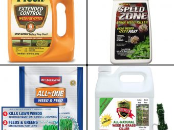 11 Best Weed Killers To Keep Your Lawn Looking Beautiful