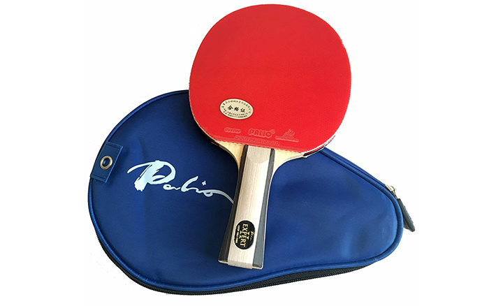 Palio Expert 2.0 Table Tennis Racquet And Case