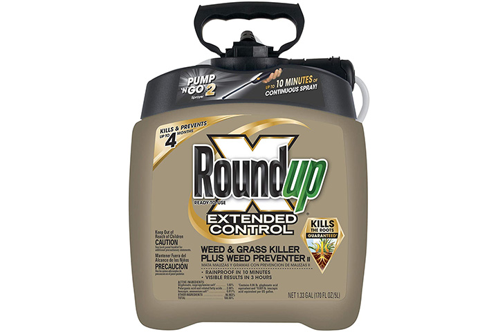 Roundup Ready-To-Use Extended Control Weed