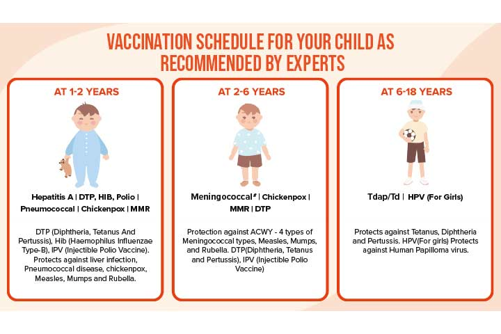 Vaccination Card' Your Toddler's Health Passport