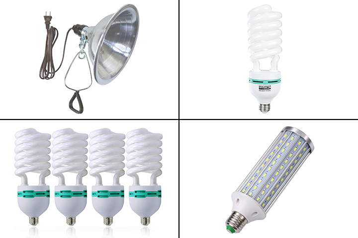 10 Best Light Bulbs For Photography in 2021