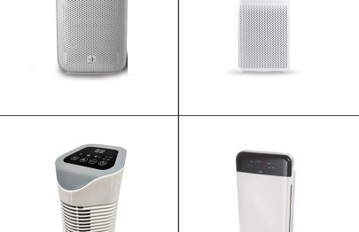 13 Best Air Purifiers In India In 2021