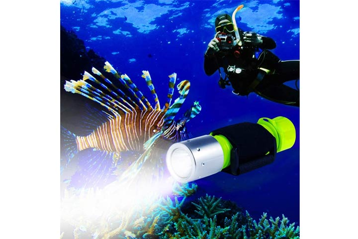 BlueFire Cree Scuba Diving Flashlight