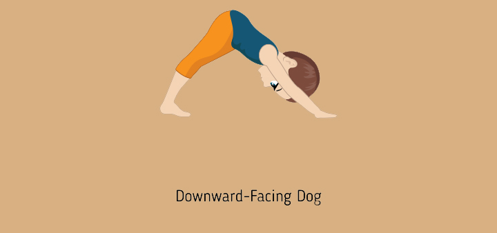 Downward facing dog or AdhoMukhaSvanasana