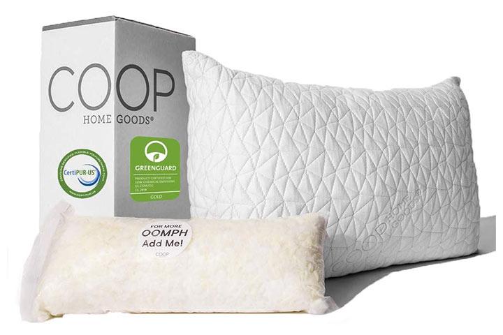 Coop Home Goods Premium Pillow