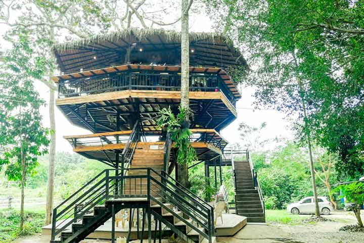 Hexagonal treehouse