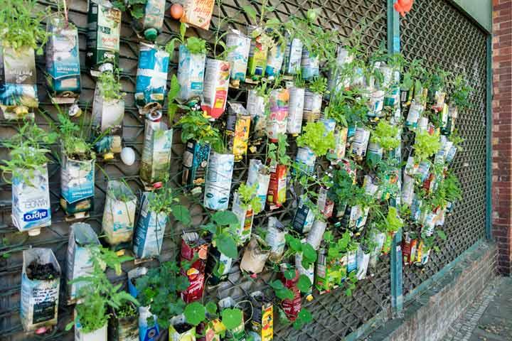 Juice box garden