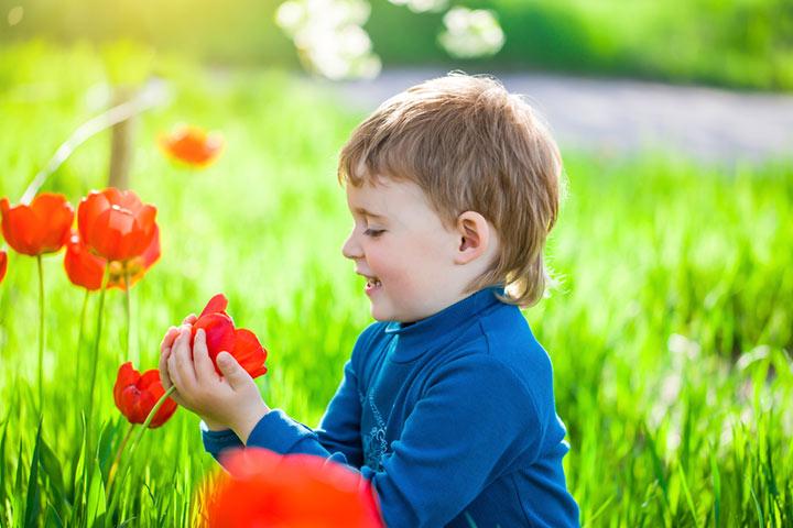Sensory kid's garden