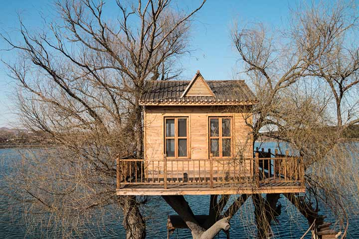 Treehouse with a deck