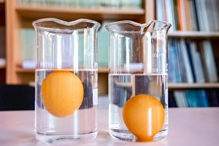 Water Density and Salinity