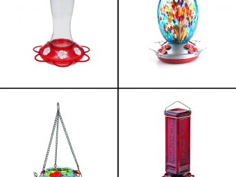 15 Best Hummingbird Feeders To Buy In 2021