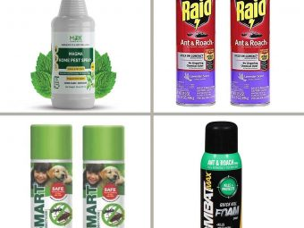 15 Best Roach Killers In 2021