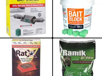 11 Best Rat Poisons To Buy In 2021