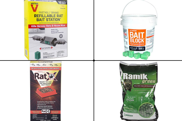 Best Rat Poisons To Buy In