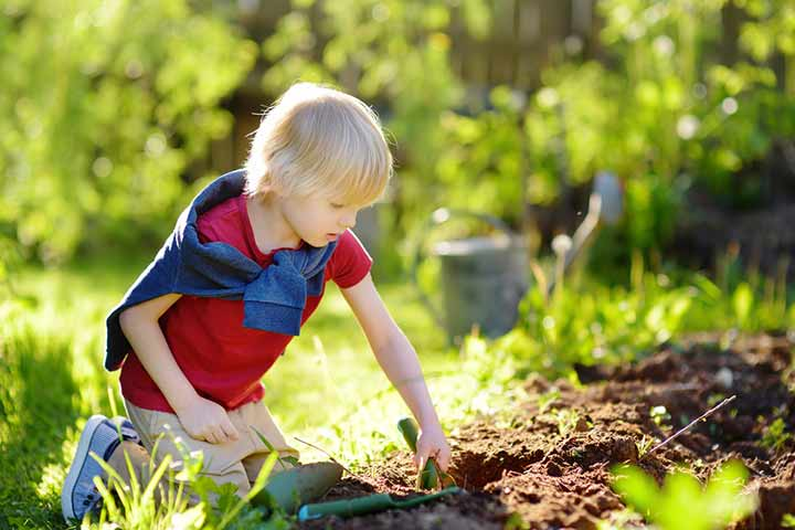 Create A Play Garden For Your Kids To Explore