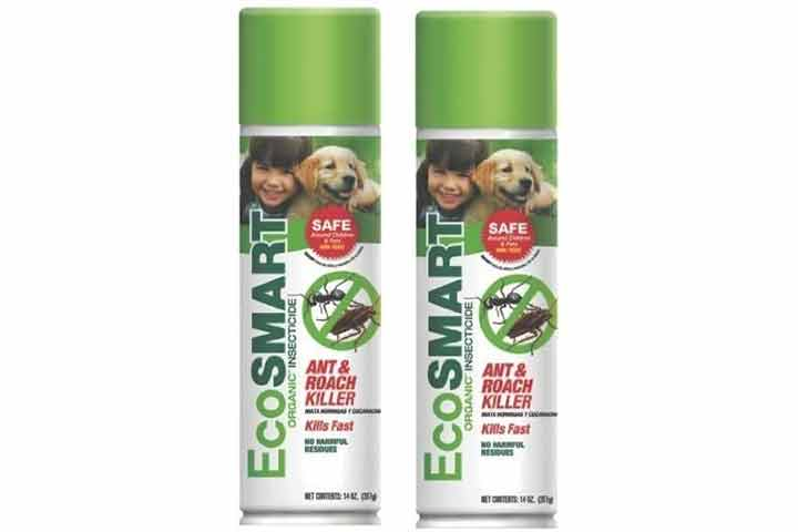 EcoSmart Ant and Roach Killer