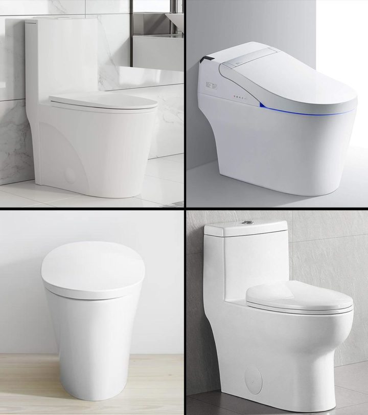 10 Best Flushing Toilets in 2021