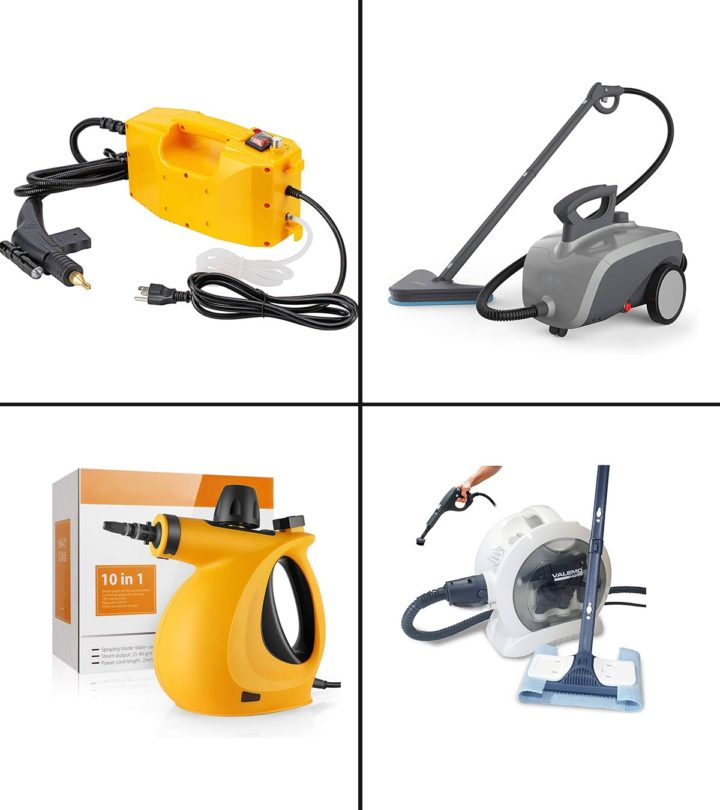 11 Best Steam Cleaners For Cars In 2021-1