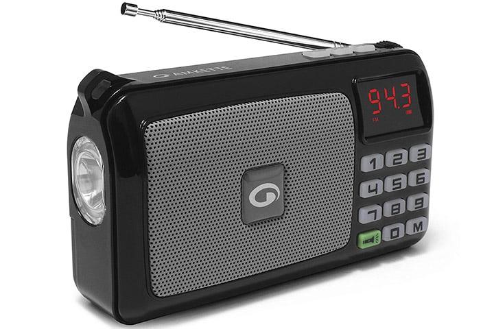 Amkette Pocket FM Multimedia Speaker
