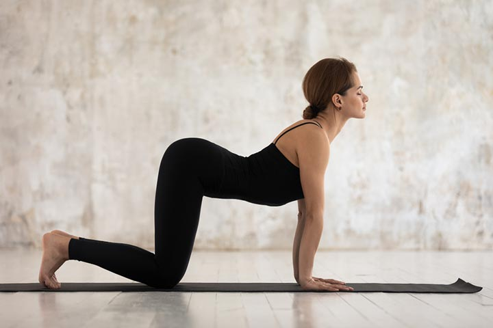 Marjari posture