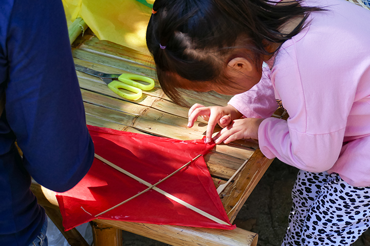 Make and fly a kite