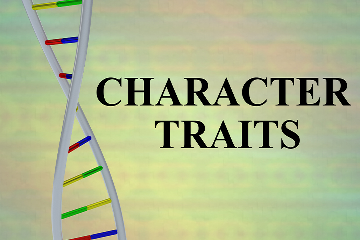 Teach them about different character traits